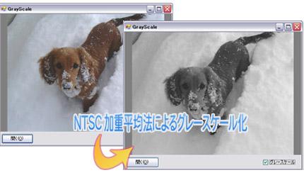 NTSC加重平均法によるグレースケール化